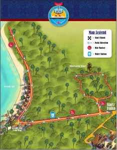 The NEW course
